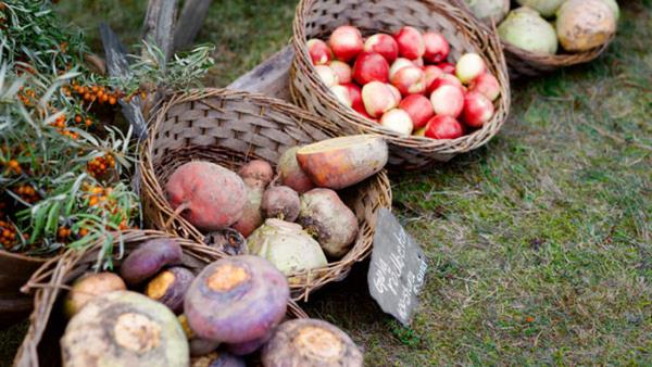Ge nytt liv till köpta grönsaker NYHET