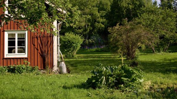 Lyckas med din trädgård- skötsel och planering