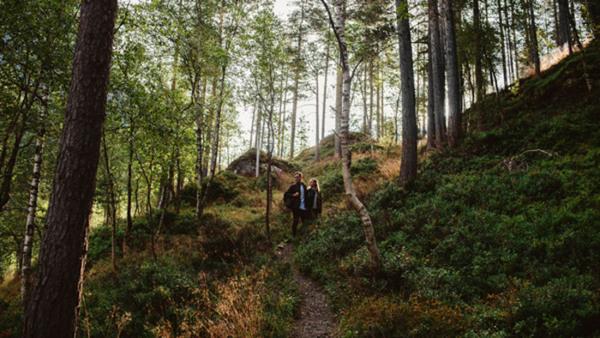 Föreläsning - Inga vänner utom bergen