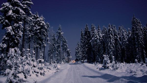 Kulturarv - skogen