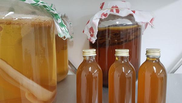 Fermentering - Kombucha, jun och vattenkefir