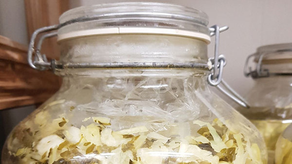 Fermentering - Kimchi & Kombucha
