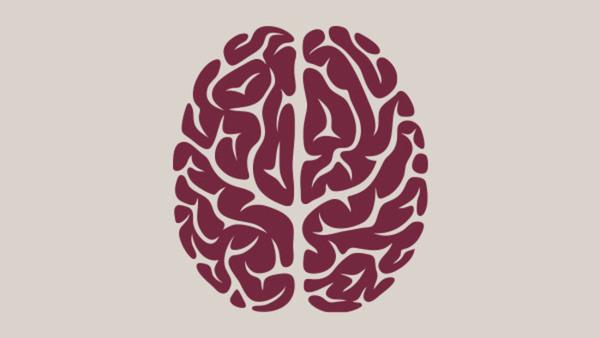 Forskarfika om hjärnan