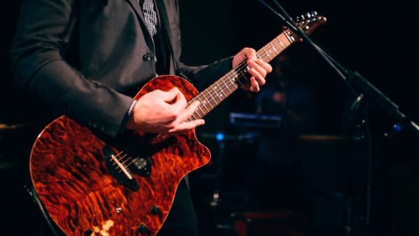 Gitarr nybörjare vuxen