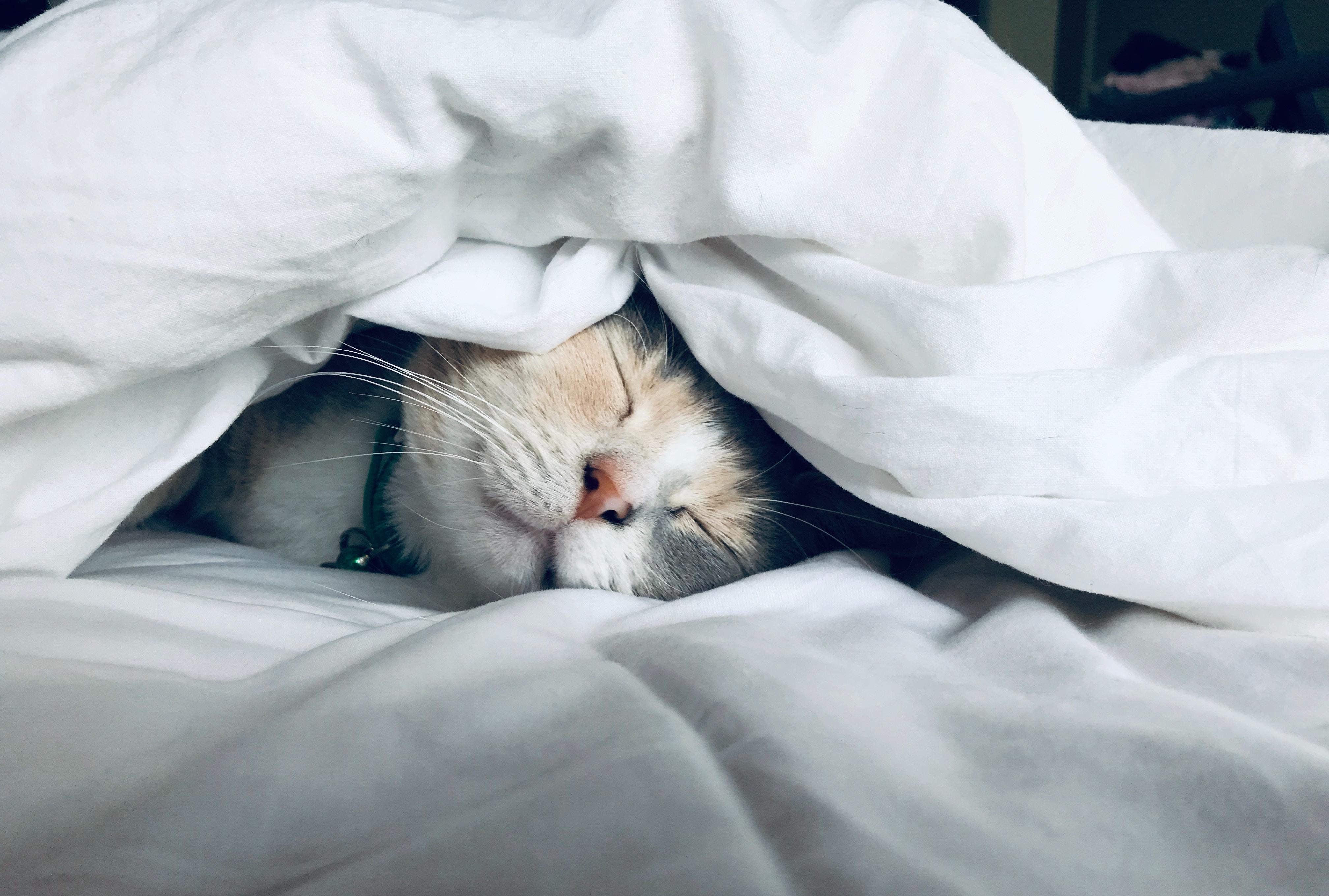 Sov - för en bättre hälsa