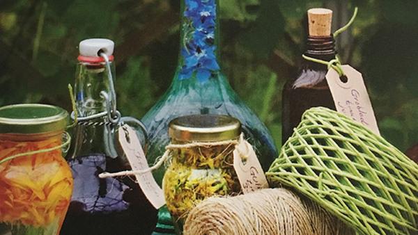 Läkeörter - hur du skapar ditt gröna apotek