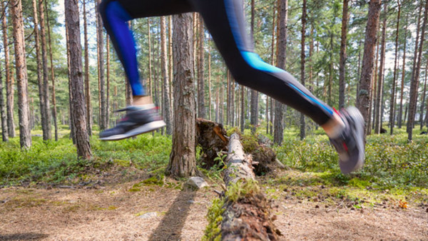Livsstil och hälsa – helhet och samspel