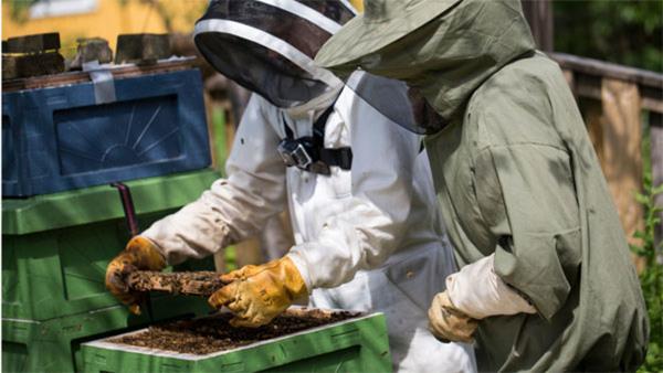 Biodling, grundkurs - torsd