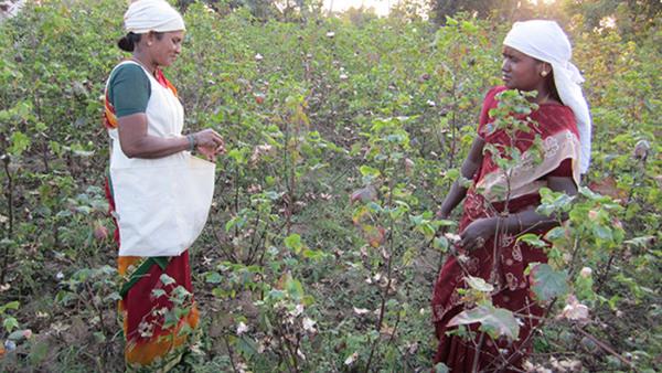 Bli ambassadör för Fairtrade